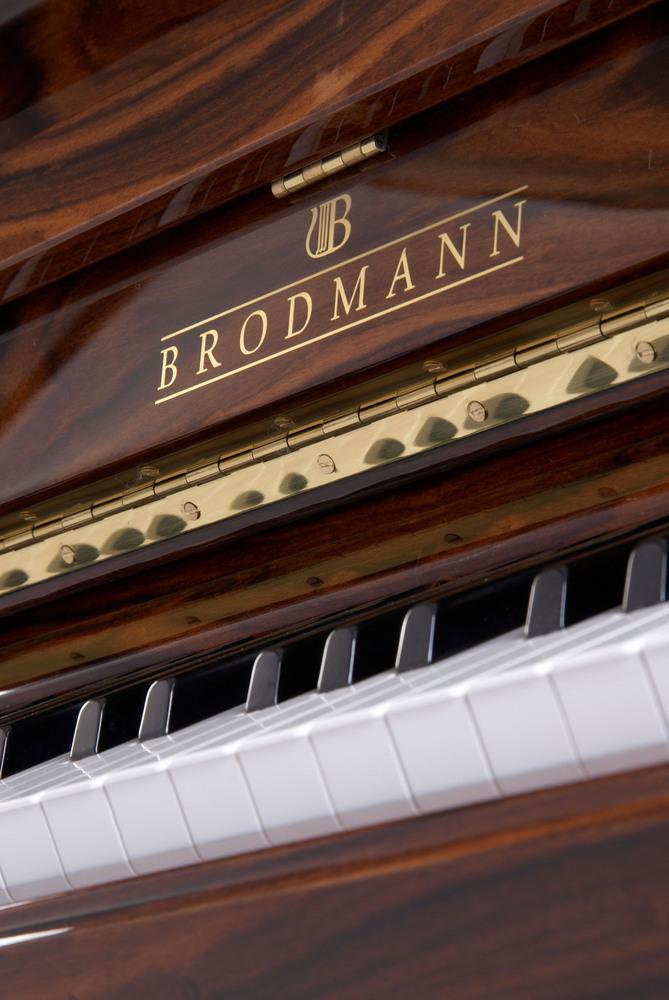 brodmann07
