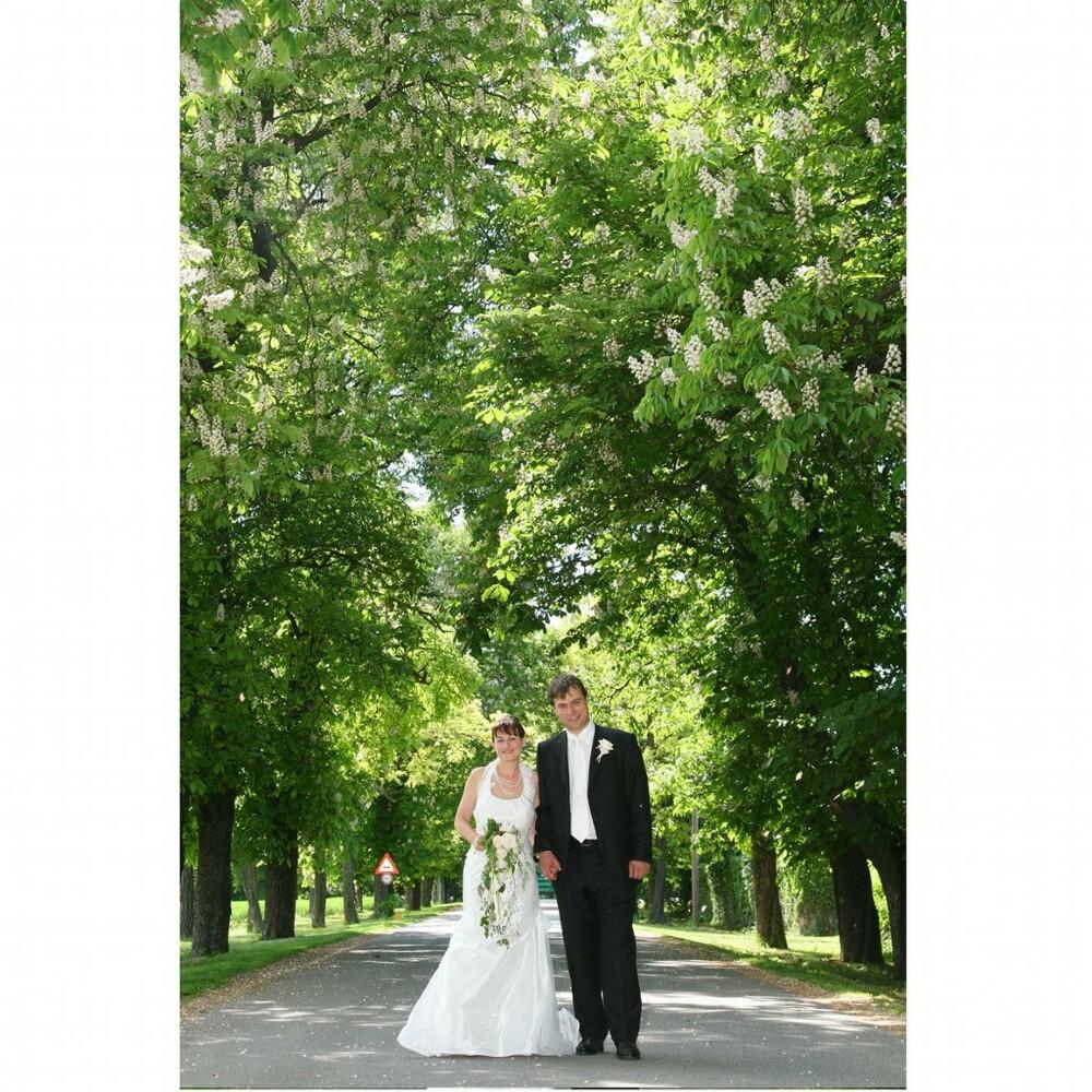 wedding-3837